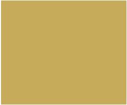 gold folder icon